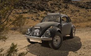 Wallpaper Mexico, Mexico, rally, Baja 1000, Volkswagen, Desert Race, 2017, Wolkswagen, Beetles, Baja 1000