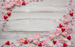 Wallpaper flowers, background, chamomile, petals, hearts, pink, decor, marzipan