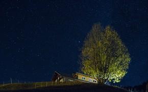 Wallpaper stars, night, house, tree