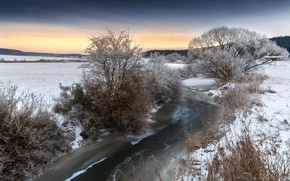 Picture winter, trees, river