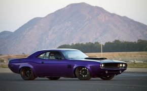 Wallpaper Dodge Challenger, purple, custom, muscle car, 1970