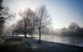 Picture fog, Park, river, morning, bench