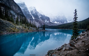 Wallpaper forest, mountains, lake, stones, rocks, Canada, Moraine Lake, Banff national Park