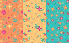 Picture flowers, texture, leaves, orange background, blue background