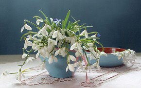 Wallpaper snowdrops, napkin, spring bouquet