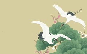 Picture trees, figure, vector, spring, Sakura, art, pair, flight, crane