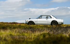 Picture Auto, Machine, Grey, Nissan, Nissan, Car, 2000, Skyline, Nissan Skyline, 2000GT, Japanese, Side view, Metallic, …