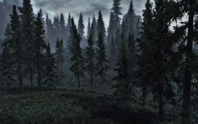 Picture forest, mountains, ate, skyrim
