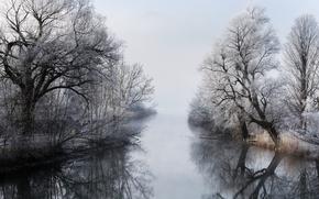 Picture winter, fog, river