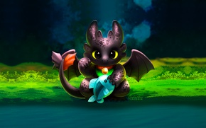 Picture dragon, fish, art, river, How to train your dragon, toothless, Toothless, the night fury, How …