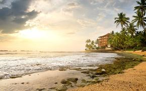 Picture sea, the sky, clouds, tropics, palm trees, shore, horizon, surf, the hotel, Sri Lanka