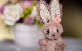 Picture flower, toy, ears, Bunny