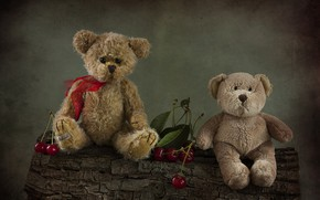 Picture cherry, berries, toys, bears