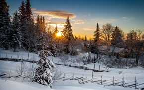 Picture winter, forest, sunset, Norway, Norway, Lillehammer, Lillehammer