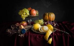 Picture flowers, table, Apple, grapes, dry, knife, pumpkin, vase, pear, still life, lemons, tablecloth, garnet, herbarium
