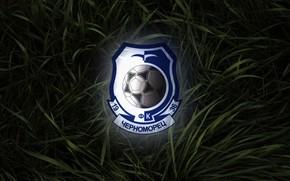 Wallpaper Black, Blue, Grass, Sport, Logo, Football, Background, Logo, Coat of arms, Club, Odessa, Chernomorets, Football ...