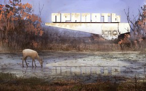 Picture reflection, vegetation, deer, Pripyat, Welcome to Pripyat