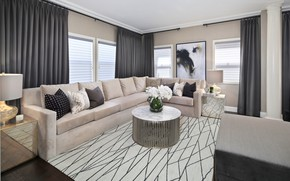 Picture flowers, design, table, room, sofa, window, curtains, mansion, living room