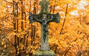 Picture background, cross, cemetery