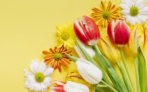 Wallpaper spring, decoration, colorful, wood, Easter, Easter, tulips, tulips, spring, the painted eggs, flowers, eggs, Happy, ...