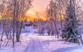 Wallpaper winter, forest, snow, sunset, house