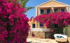 Picture the sun, flowers, house, boat, Greece, garden, the bushes, bougainvillea, Kastelorizo, Kastelorizo