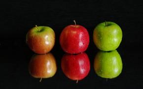 Wallpaper macro, water, reflection, fruit, apples, drops