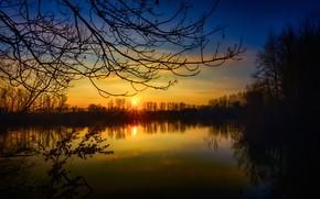 Wallpaper sunset, trees, lake, Germany