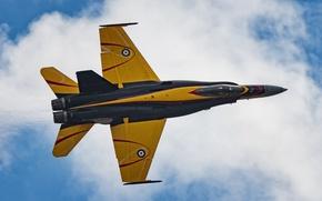 Picture fighter, Hornet, Hornet, CF-18