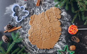 Picture holiday, spruce, form, New year, cinnamon, Bumps, Cookies, Lollipops