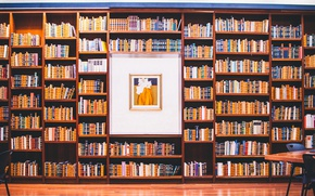 Picture books, picture, library, a lot, shelves