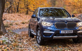 Picture autumn, SUV, 2017, xLine, BMW X3, xDrive20d