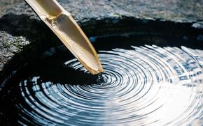 Wallpaper macro, calm, bamboo, stem, harmony, bokeh, balance, wallpaper., tank, clean water, circles on the water, ...