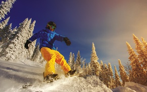 Picture winter, the sun, snow, trees, snowboard, glasses, jacket, gloves, helmet, Board, extreme, pants, snowboarder