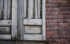 Picture wall, window, shutters
