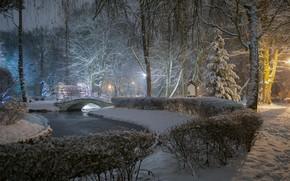 Picture winter, snow, trees, bridge, pond, Park, the bushes