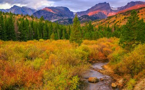 Picture autumn, trees, mountains, nature, river, stream, Colorado, USA, the bushes, Rocky Mountain