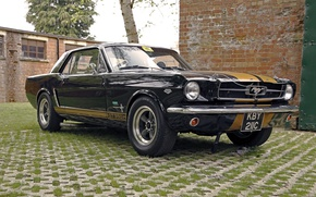Picture retro, Ford Mustang, classic