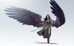 Picture girl, weapons, wings, warrior, art, fantasy, todd hebenstreit, LVL, Black Planeswalker