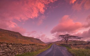 Picture road, clouds, tree, England, glow