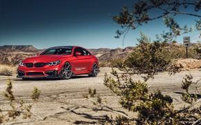 Picture auto, red, nature, design, BMW M4