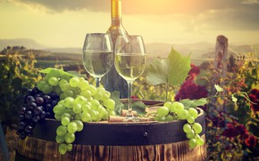 Picture wine, glasses, barrel, bunches of grapes
