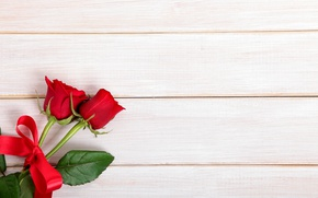 Picture red, love, wood, romantic, roses, red roses