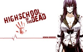 Picture anime, busujima saeko, hotd