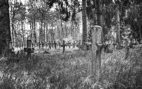 Picture background, crosses, cemetery