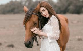Wallpaper Asian, girl, horse