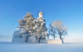 Picture winter, snow, fog, temple