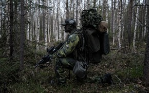 Picture forest, weapons, soldiers, camouflage, ammunition