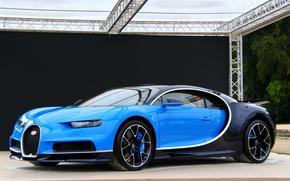 Picture bugatti, blue, chiron
