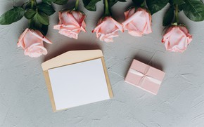 Picture flowers, background, tape, Roses, pink, buds, Gift